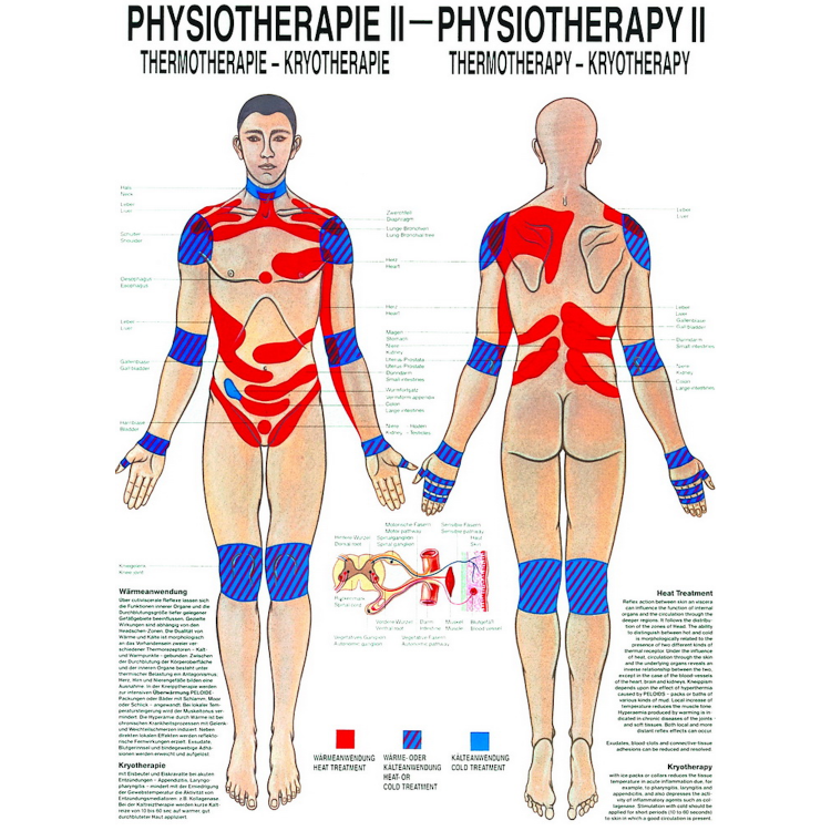 "Öffne Poster ""Physiotherapie II - Thermo- & Kryotherapie"""